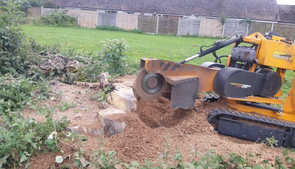 A tree stump grinding service based in Essex, call 07971 648879 for more details.  ...