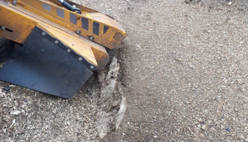 Stump grinding an Ash tree stump near Stansted, Essex. The tree stump removal is in preparation for turfing this area of...