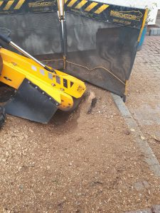 A selection of photographs from tree stump grinding and removals at Little Chesterford, near saffron Walden, Essex. ...