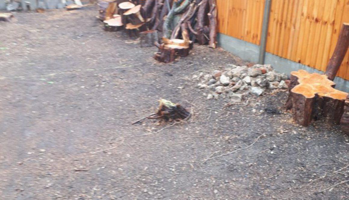 Essex tree stump grinding removing various tree stumps near Totteridge, Hertfordshire. ...