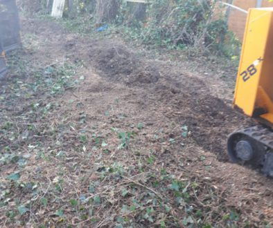 Tree stump grinding in Bocking, unfortunately near Braintree, Essex. I had a mixture of tree stumps to grind, conifers, ...
