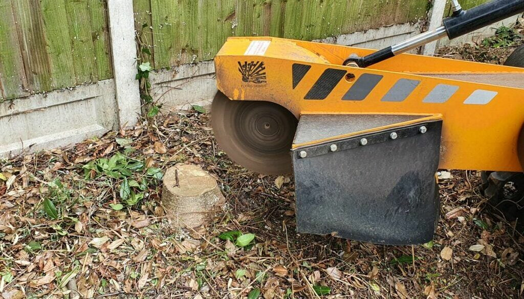 """Grinding tree stumps in """"Old Moulsham"""", Chelmsford, Essex. There were a variety of trees stumps to be removed as the gar…"""
