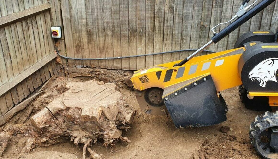 Removing a eucalyptus tree stump today in Chelmer village, near Chelmsford, Essex. We are here to help you with all your…