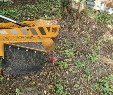 Today we are removing a selection of tree stumps in preparation for the digger and landscapers. In Haverhill, Suffolk. #…