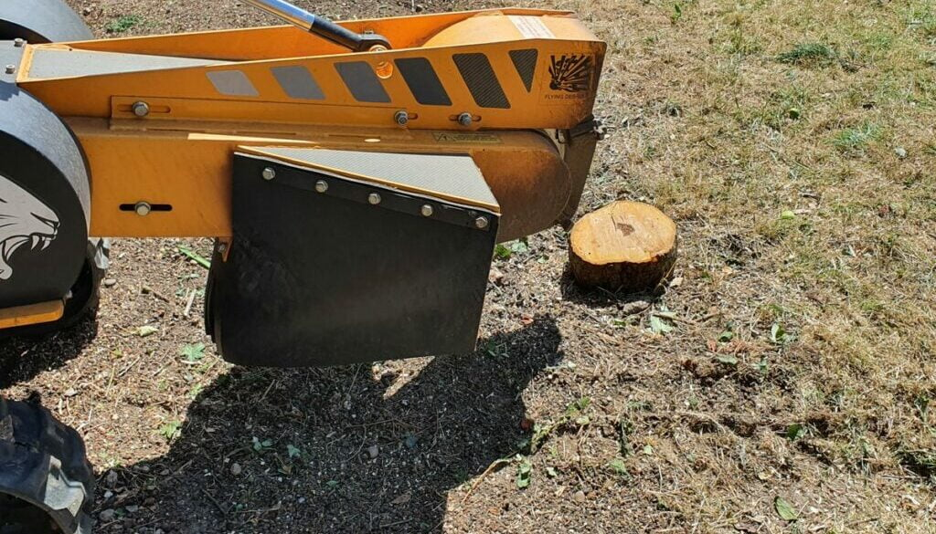 Tree stump grinding in Wickford, Essex. The majority of tree stumps were conifer trees although there are a few other va…
