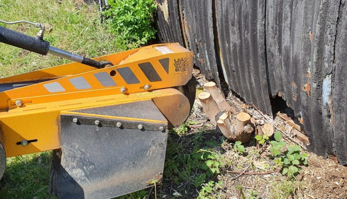 Tree stump grinding in Jasper's Green, Panfield, Braintree, Essex. This particular job was slightly different due to the...