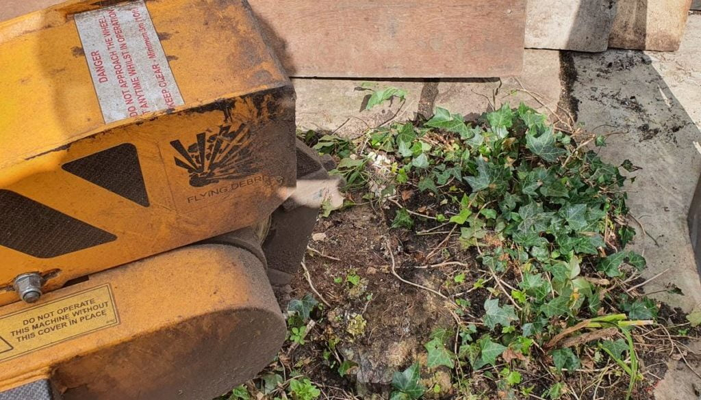 Tree stump grinding at Finchingfield, near Hedingham, Essex. Here I was removing an old Willow stump that was between th...