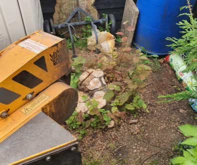 Tree stump grinding in Cornish Hall End near Haverhill, Suffolk. There were a couple of stumps that needed removing in a...